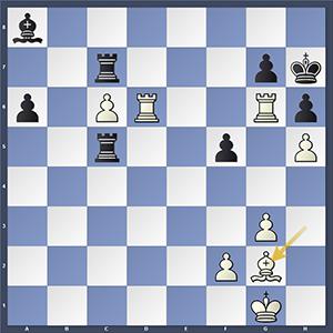 Mamedyarov vs Tomashevsky, final position.